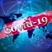 l-virus-covid19.JPG